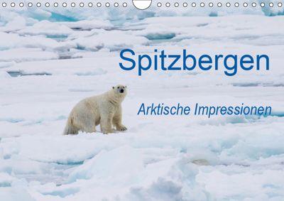 Spitzbergen - Arktische Impressionen (Wandkalender 2019 DIN A4 quer), Wilfried Martin
