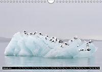 Spitzbergen - Arktische Impressionen (Wandkalender 2019 DIN A4 quer) - Produktdetailbild 1