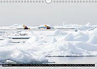 Spitzbergen - Arktische Impressionen (Wandkalender 2019 DIN A4 quer) - Produktdetailbild 10