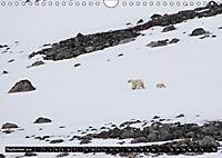 Spitzbergen - Arktische Impressionen (Wandkalender 2019 DIN A4 quer) - Produktdetailbild 9