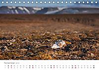 Spitzbergen - Wild.Rau.Ungezähmt. (Tischkalender 2019 DIN A5 quer) - Produktdetailbild 11