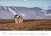 Spitzbergen - Wild.Rau.Ungezähmt. (Wandkalender 2019 DIN A3 quer) - Produktdetailbild 7