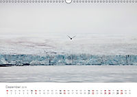 Spitzbergen - Wild.Rau.Ungezähmt. (Wandkalender 2019 DIN A3 quer) - Produktdetailbild 12