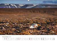 Spitzbergen - Wild.Rau.Ungezähmt. (Wandkalender 2019 DIN A2 quer) - Produktdetailbild 11
