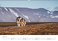 Spitzbergen - Wild.Rau.Ungezähmt. (Wandkalender 2019 DIN A2 quer) - Produktdetailbild 7