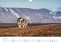 Spitzbergen - Wild.Rau.Ungezähmt. (Wandkalender 2019 DIN A4 quer) - Produktdetailbild 7