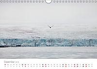 Spitzbergen - Wild.Rau.Ungezähmt. (Wandkalender 2019 DIN A4 quer) - Produktdetailbild 12
