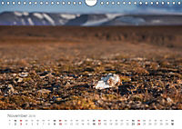 Spitzbergen - Wild.Rau.Ungezähmt. (Wandkalender 2019 DIN A4 quer) - Produktdetailbild 11