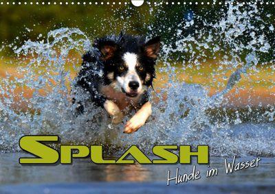 SPLASH - Hunde im Wasser (Wandkalender 2019 DIN A3 quer), Renate Bleicher