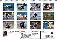 SPLASH - Hunde im Wasser (Wandkalender 2019 DIN A3 quer) - Produktdetailbild 13
