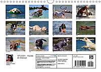 SPLASH - Hunde im Wasser (Wandkalender 2019 DIN A4 quer) - Produktdetailbild 13