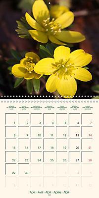 Spring Begins (Wall Calendar 2019 300 × 300 mm Square) - Produktdetailbild 4