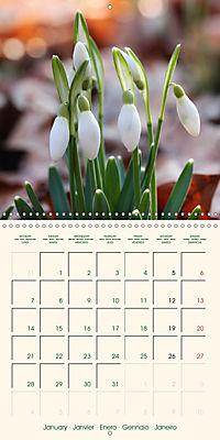 Spring Begins (Wall Calendar 2019 300 × 300 mm Square) - Produktdetailbild 1