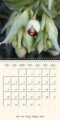 Spring Begins (Wall Calendar 2019 300 × 300 mm Square) - Produktdetailbild 5