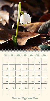 Spring Begins (Wall Calendar 2019 300 × 300 mm Square) - Produktdetailbild 3