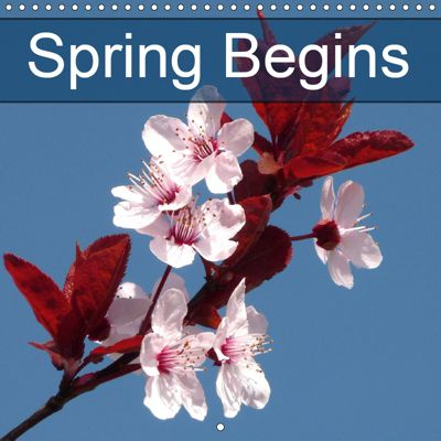 Spring Begins (Wall Calendar 2019 300 × 300 mm Square), Gisela Kruse