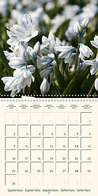 Spring Begins (Wall Calendar 2019 300 × 300 mm Square) - Produktdetailbild 9