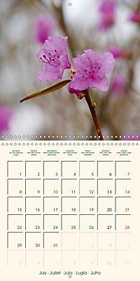 Spring Begins (Wall Calendar 2019 300 × 300 mm Square) - Produktdetailbild 7