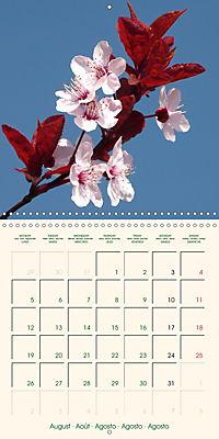 Spring Begins (Wall Calendar 2019 300 × 300 mm Square) - Produktdetailbild 8