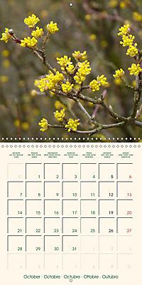 Spring Begins (Wall Calendar 2019 300 × 300 mm Square) - Produktdetailbild 10