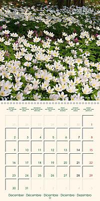 Spring Begins (Wall Calendar 2019 300 × 300 mm Square) - Produktdetailbild 12