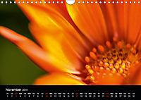 Spring flora (Wall Calendar 2019 DIN A4 Landscape) - Produktdetailbild 11