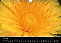 Spring flora (Wall Calendar 2019 DIN A4 Landscape) - Produktdetailbild 7