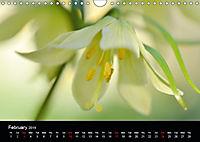 Spring flora (Wall Calendar 2019 DIN A4 Landscape) - Produktdetailbild 2