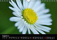 Spring flora (Wall Calendar 2019 DIN A4 Landscape) - Produktdetailbild 8