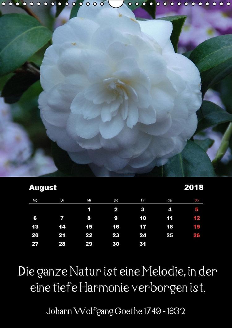 Sprüche Und Zitate Berühmter Personen über Blumen Und Natur