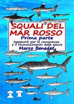 Squali del Mar Rosso 1a Parte, Marco Benedet