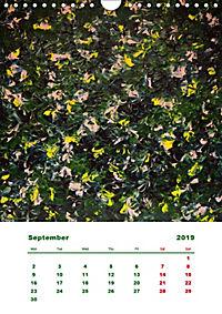SQUARELY ABSTRACT BY GAYA (Wall Calendar 2019 DIN A4 Portrait) - Produktdetailbild 9
