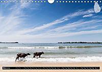 Sri Lanka, eine Reise über die Insel der King Coconut (Wandkalender 2019 DIN A4 quer) - Produktdetailbild 3