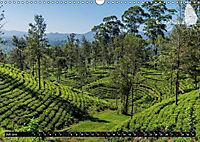 Sri Lanka, eine Reise über die Insel der King Coconut (Wandkalender 2019 DIN A3 quer) - Produktdetailbild 7
