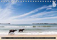 Sri Lanka, eine Reise über die Insel der King Coconut (Tischkalender 2019 DIN A5 quer) - Produktdetailbild 3