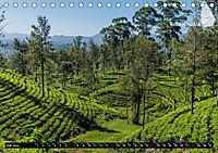 Sri Lanka, eine Reise über die Insel der King Coconut (Tischkalender 2019 DIN A5 quer) - Produktdetailbild 7