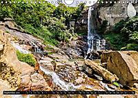 Sri Lanka, eine Reise über die Insel der King Coconut (Wandkalender 2019 DIN A4 quer) - Produktdetailbild 9