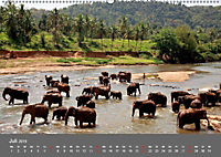 Sri Lanka-Trauminsel im Indischen Ozean (Wandkalender 2019 DIN A2 quer) - Produktdetailbild 7