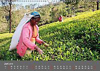 Sri Lanka-Trauminsel im Indischen Ozean (Wandkalender 2019 DIN A3 quer) - Produktdetailbild 6
