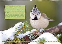 Steckbriefe einheimischer Vögel (Wandkalender 2019 DIN A2 quer) - Produktdetailbild 1