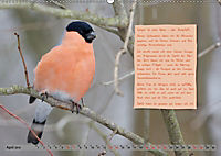 Steckbriefe einheimischer Vögel (Wandkalender 2019 DIN A2 quer) - Produktdetailbild 4