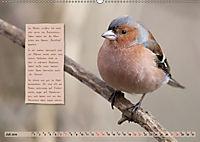 Steckbriefe einheimischer Vögel (Wandkalender 2019 DIN A2 quer) - Produktdetailbild 7