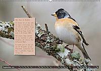 Steckbriefe einheimischer Vögel (Wandkalender 2019 DIN A2 quer) - Produktdetailbild 9