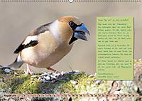 Steckbriefe einheimischer Vögel (Wandkalender 2019 DIN A2 quer) - Produktdetailbild 8