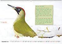 Steckbriefe einheimischer Vögel (Wandkalender 2019 DIN A2 quer) - Produktdetailbild 12