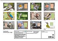 Steckbriefe einheimischer Vögel (Wandkalender 2019 DIN A2 quer) - Produktdetailbild 13