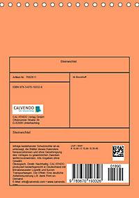 Steinwichtel (Tischkalender 2019 DIN A5 hoch) - Produktdetailbild 13