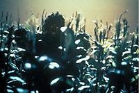 Stephen King's The Stand - Das letzte Gefecht - Produktdetailbild 5