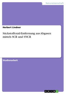 Stickstoffoxid-Entfernung aus Abgasen mittels SCR und SNCR, Herbert Lindner