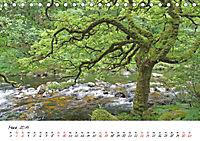 Stille Natur (Tischkalender 2019 DIN A5 quer) - Produktdetailbild 3